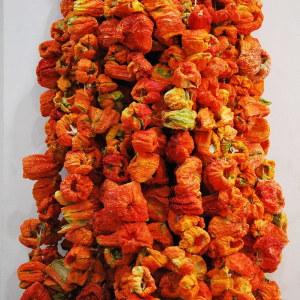 dried red peppers