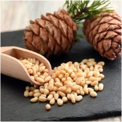 Pine Nuts, Natural, Best Quality